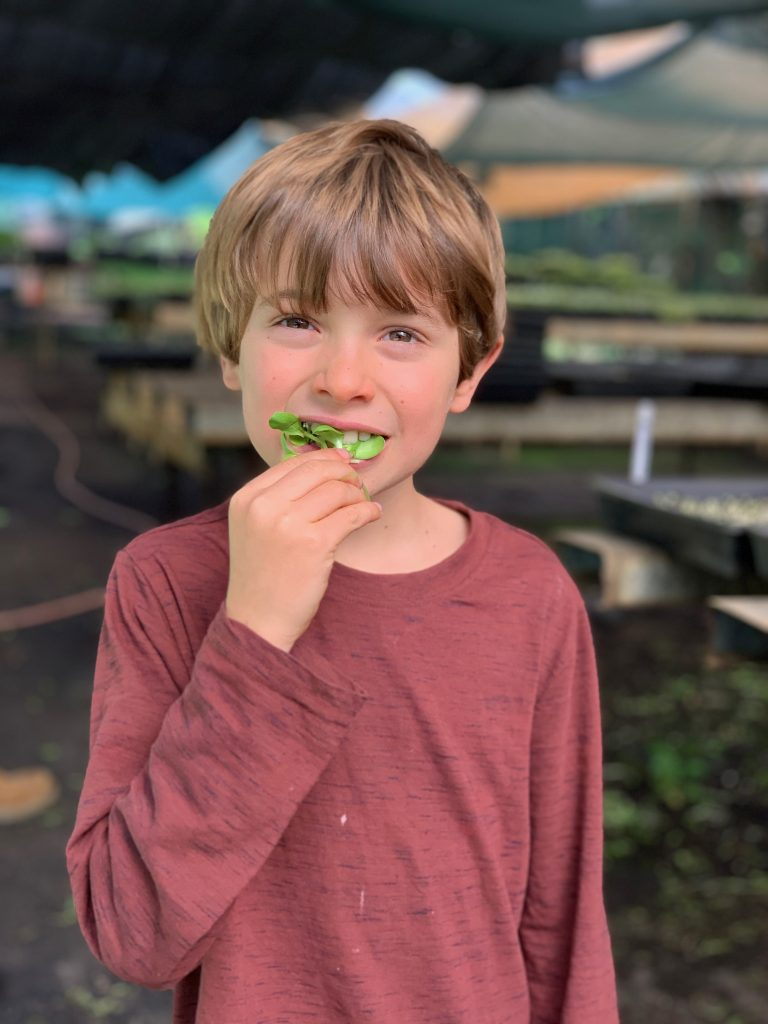 Healthy kids who eat greens